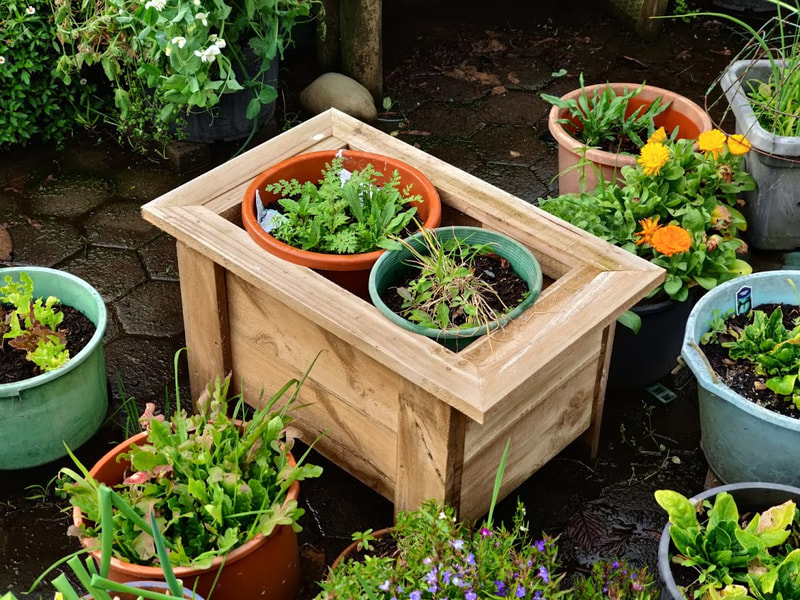 Custom made pine planter box